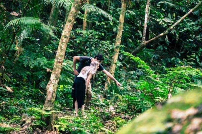 Phong Nha Botanic Garden Trekking 1 Day 1 Night- Phong Nha Locals Travel