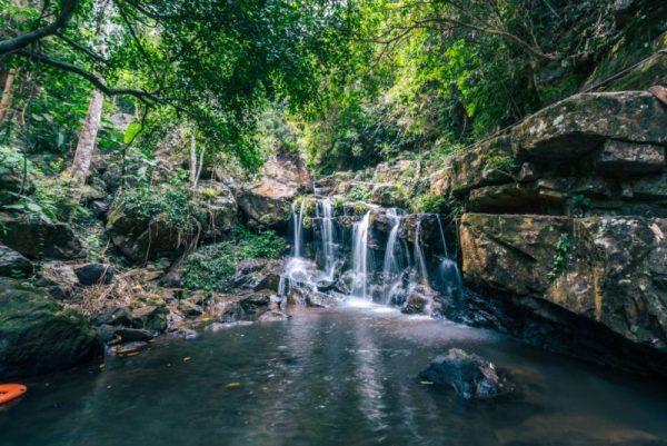Phong Nha Botanical Garden Trekking- Phong Nha Locals Travel