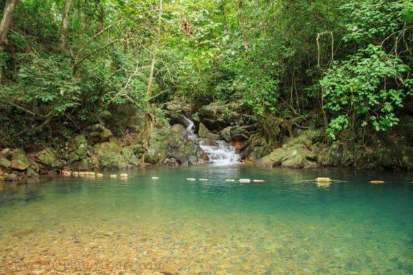 Phong Nha Botanical Garden- Phong Nha Locals Travel