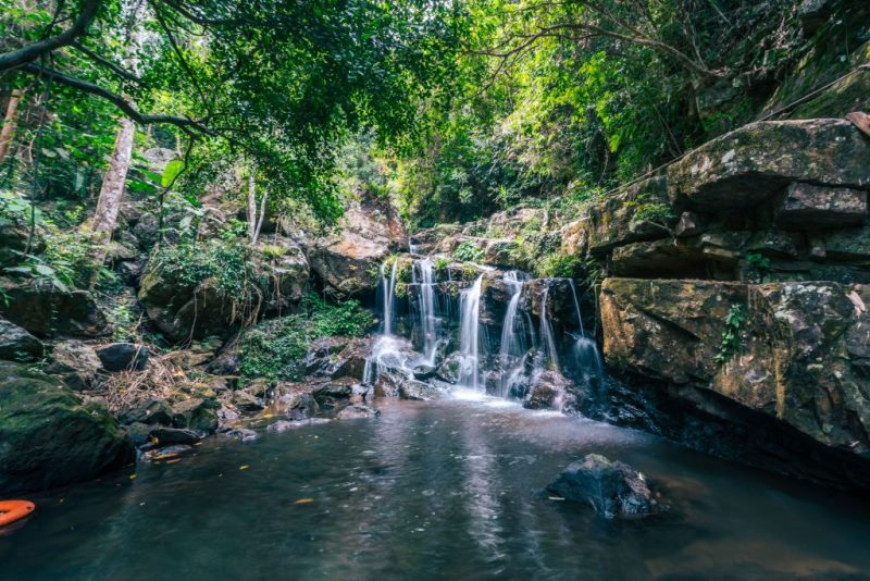 Phong Nha Botanical Garden Trekking