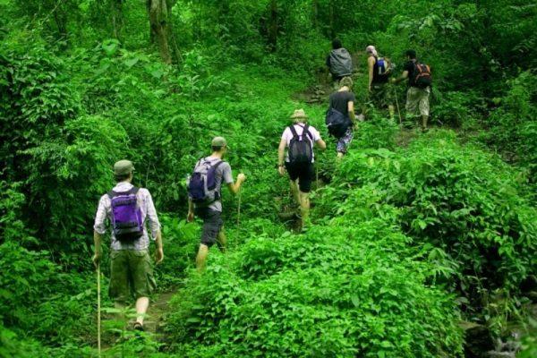 Phong Nha Botanic garden trekking 2 days- Phong Nha Locals Travel