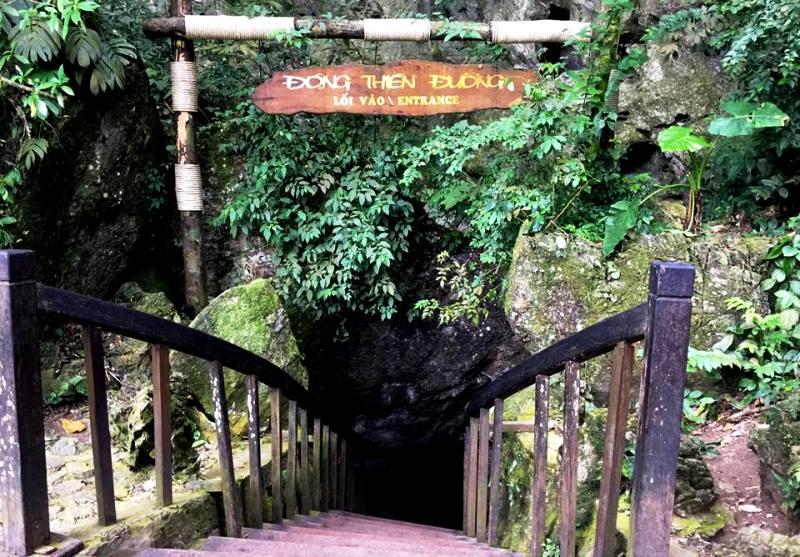 Paradise Cave Phong Nha- Phong Nha Locals Travel